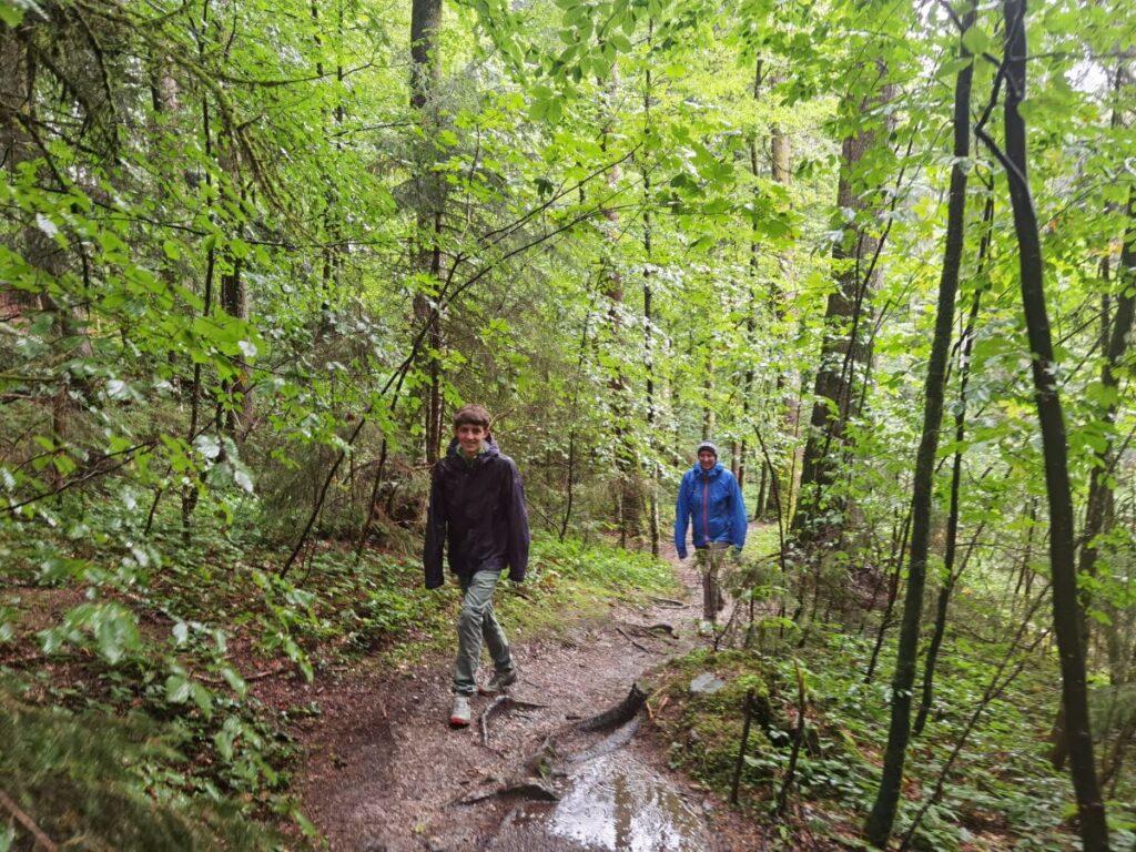 Hasenreuter Wasserfälle wandern - rund 5 Minuten dauert der kurze Wanderweg durch den Wald