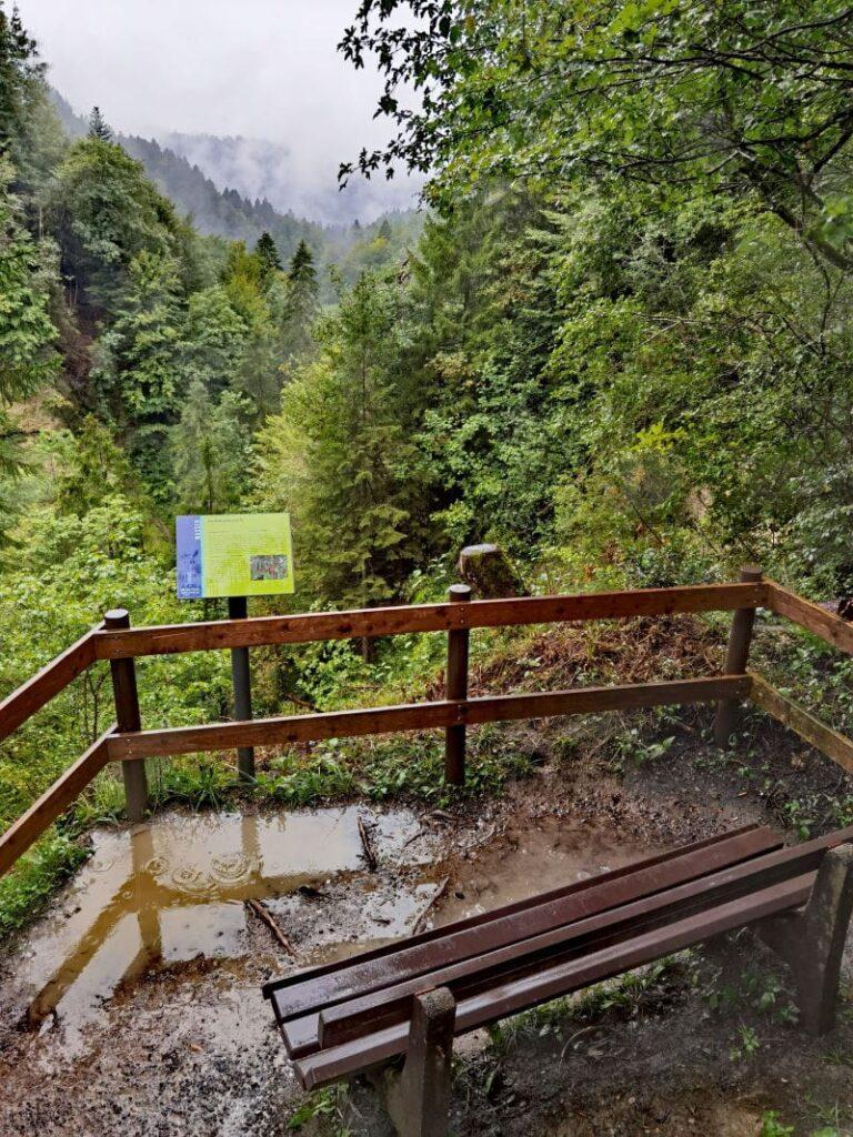 Blick von der Aussichtskanzel bei den Scheidegger Wasserfällen in die Rohrachschlucht