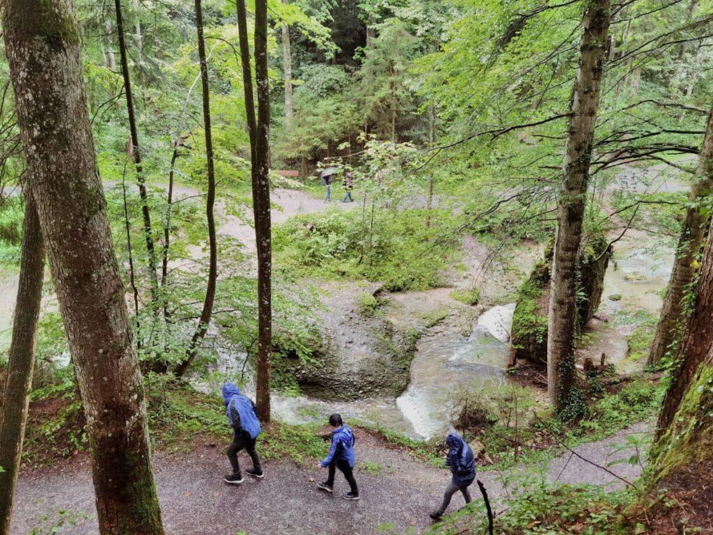 Entlang der Scheidegger Wasserfälle wandern - wir waren bei Regenwetter im Allgäu unterwegs